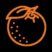 Saeta_Icon_500x500_Shampoo_Orangen-Mandarinenoel